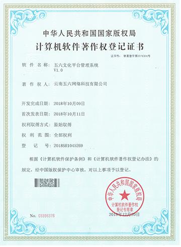 云南文化平台管理系统   v1.0